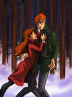 Ron and Hermione by Bonequisha