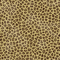 Animal Fur Stock Texture by ai-forte