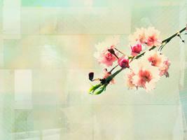 Flower Wallpaper by BreAnn