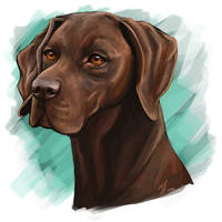 Liver GSP by mJackson