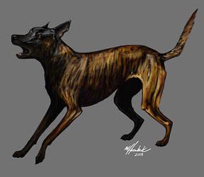 2013-11 DS Bark
