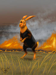 Fire hare