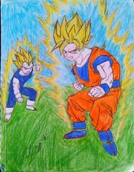 Saiyen Goku and Vegeta by AlexAdina