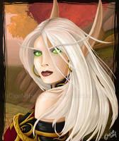 Warcraft : Blood Elf Paladin by geN8hedgehog