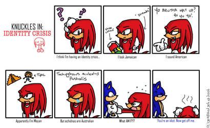 Knuckles Identity Crisis by geN8hedgehog