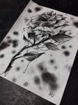 Monster rose