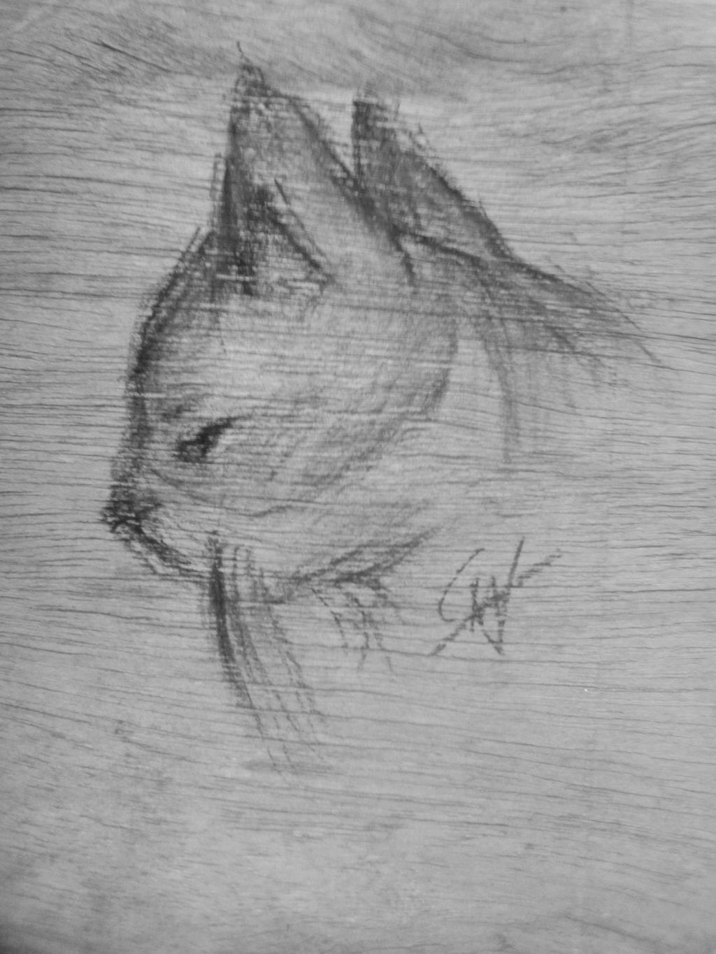 Charcoal Cat -practice- by imatrashcan2