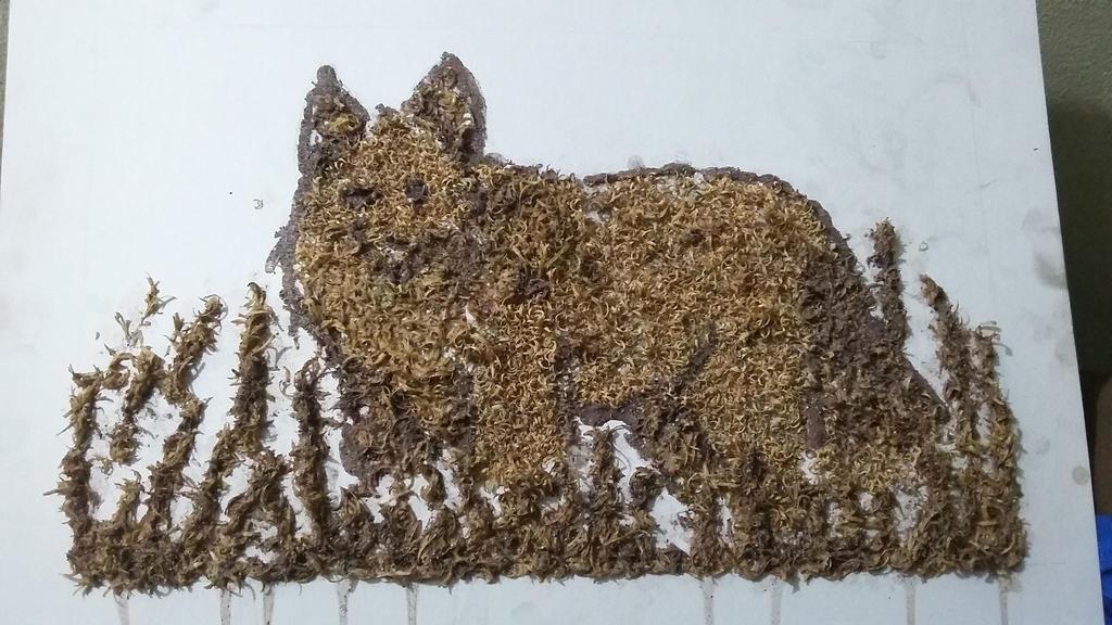 Its a fox by imatrashcan2