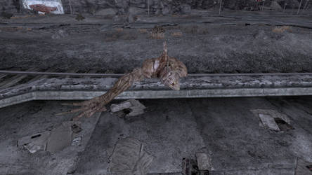 Funny looking corpse