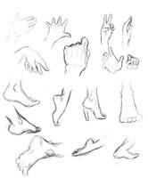 Hands and feet by THEAltimate
