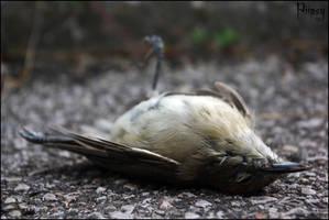 Dead by Piipsy