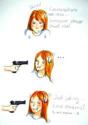 Plz don't shoot me by annbrair