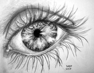 Window to the soul by annbrair