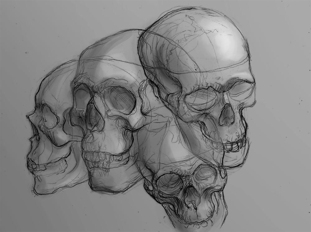 skullz by ShaggyHandlz