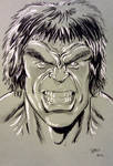 Lou Ferrigno Hulk convention sketch