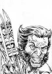 Wolverine vs Hulk sketch (Incredible Hulk no.340) by Simon-Williams-Art