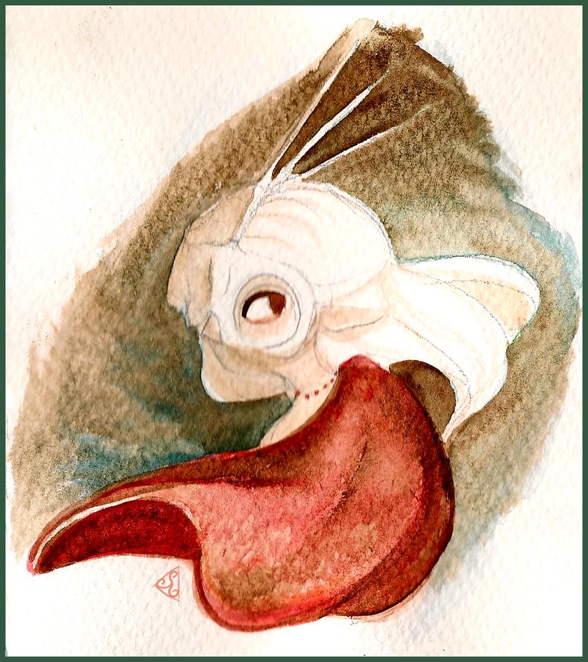 Ossik - Watercolour Sketch by dizzyrin