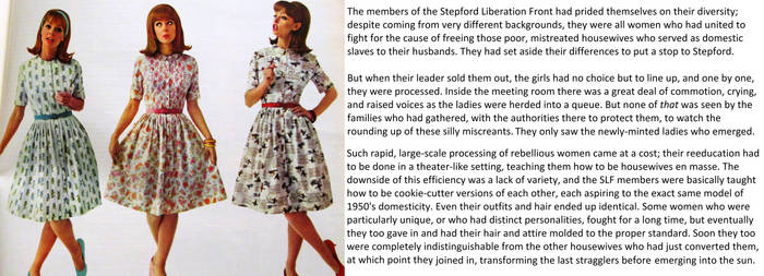 Stepford Liberation Front: A Brand New Day by Darlingyourehome