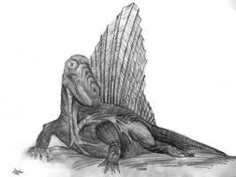 Dimetrodon by diplodok7