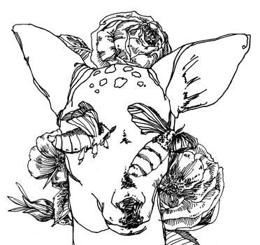 Doe and Silkworm Moths by greytrousers