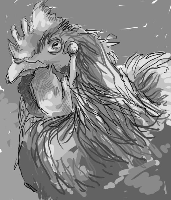Rooster number 1 by greytrousers