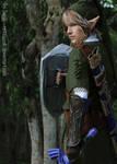 Legend of Zelda - Protector