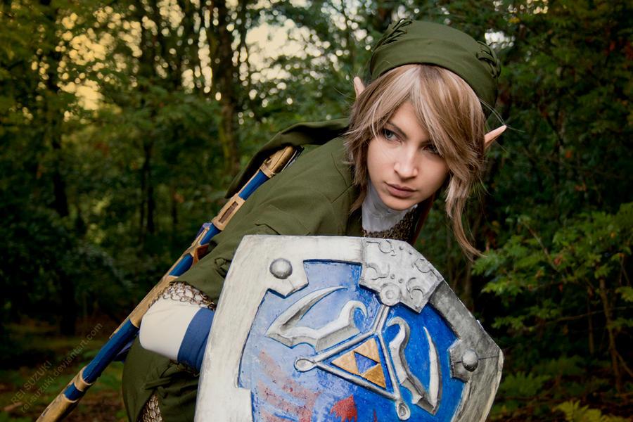 Legend of Zelda - The Beast Hero by Rei-Suzuki