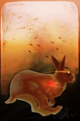 Dear Rabbit by jay-birds