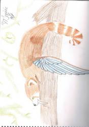red panda by missfrisk