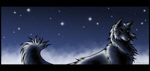 Under Your Shining Stars