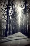 Spleen  autumnal street by mantrasiva