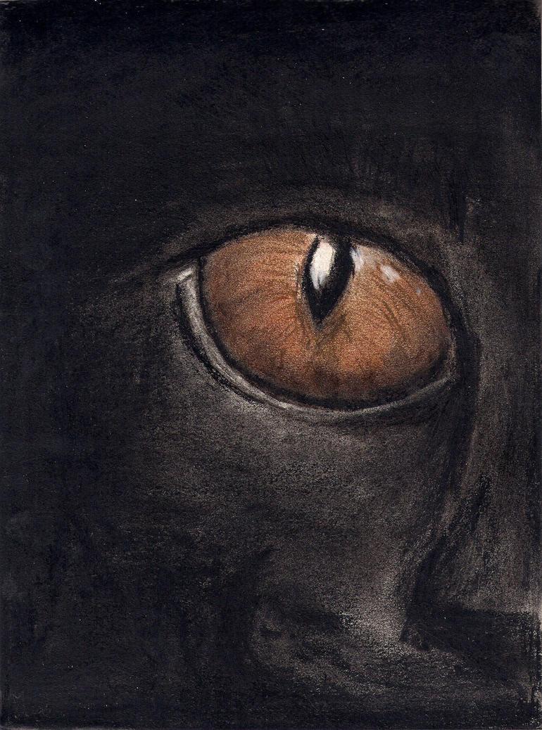 sketchbook: Cat by ArtistSoul13