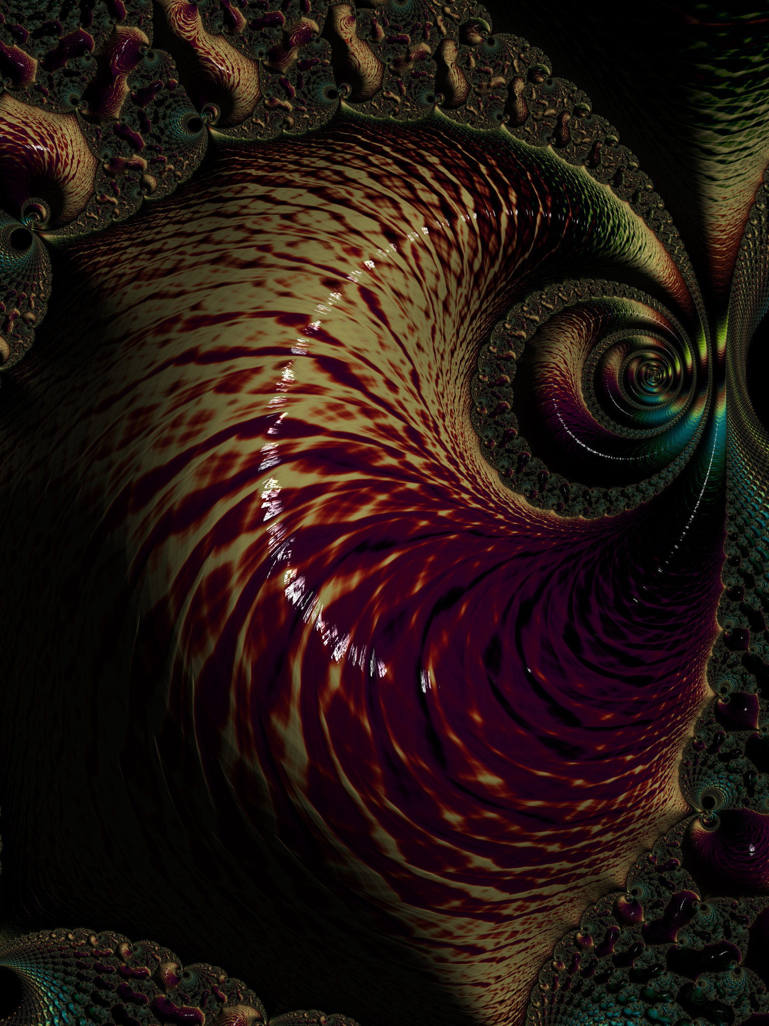 Nautilus by KateHodges