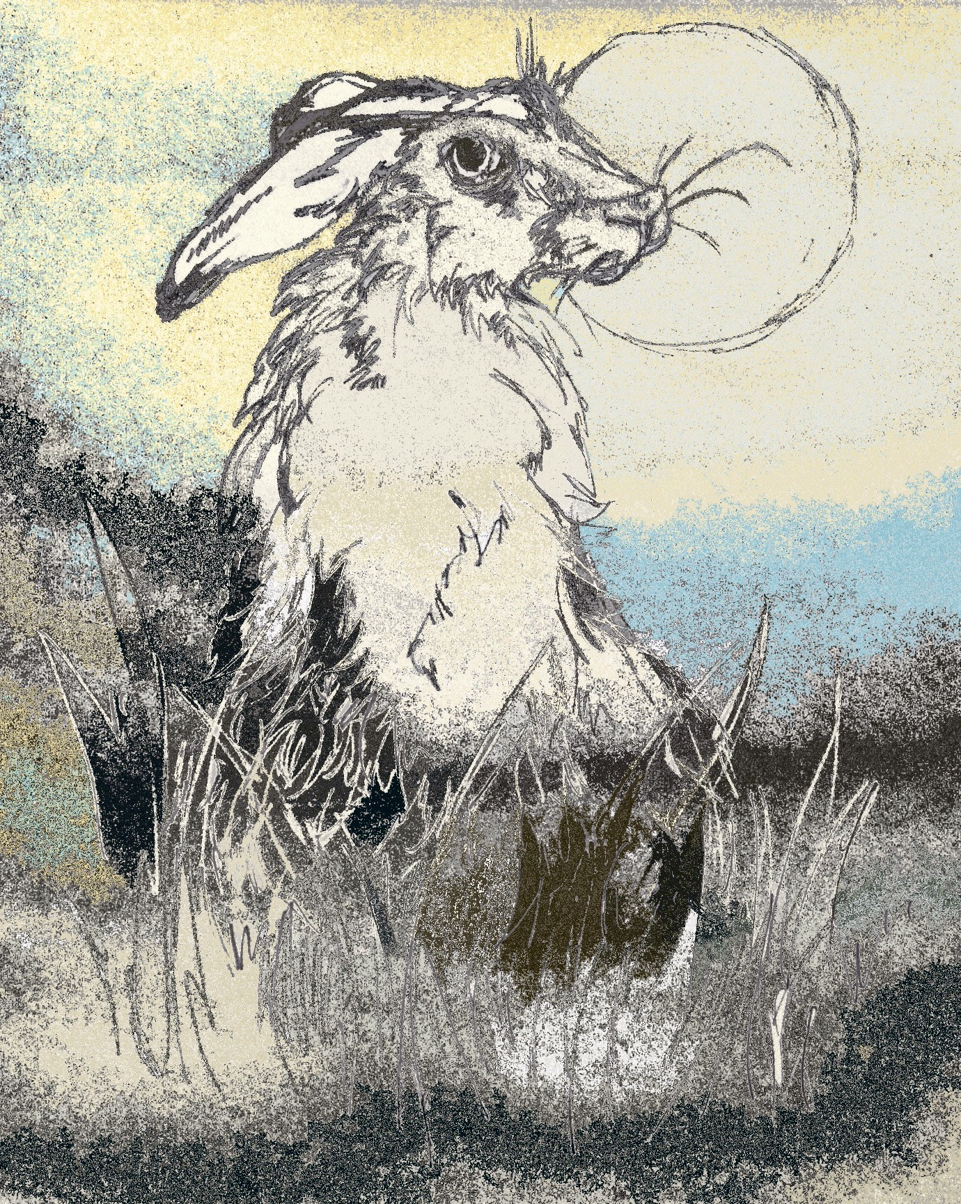 Hare by KateHodges