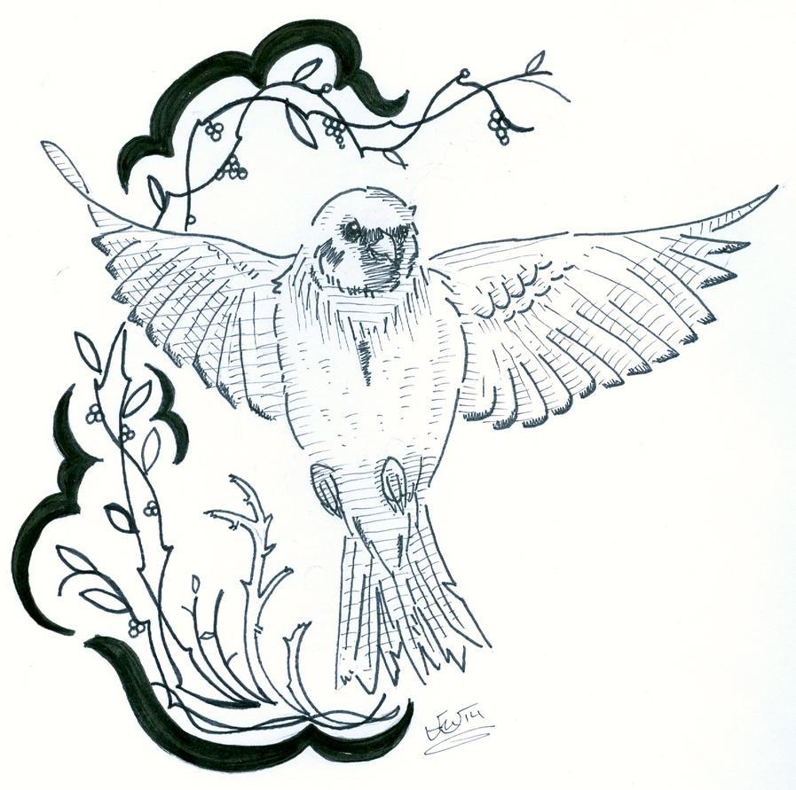 Sparrow by eggsistoast