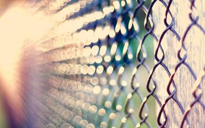 Metal Fence 4