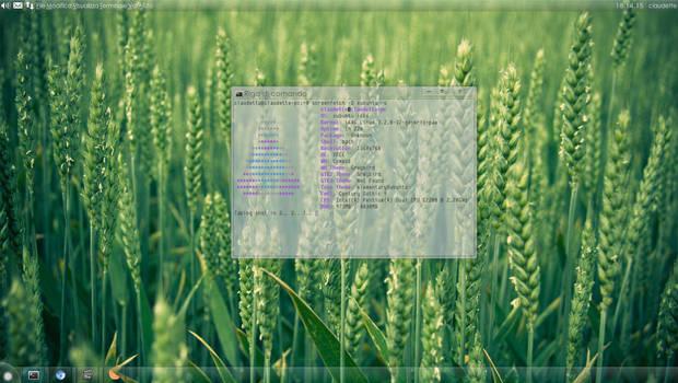 Xubuntu 12.04 Precise Pangolin (28/12/2012)