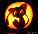 Joey on a Pumpkin