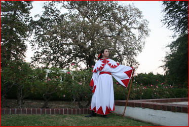 In the Fading Light