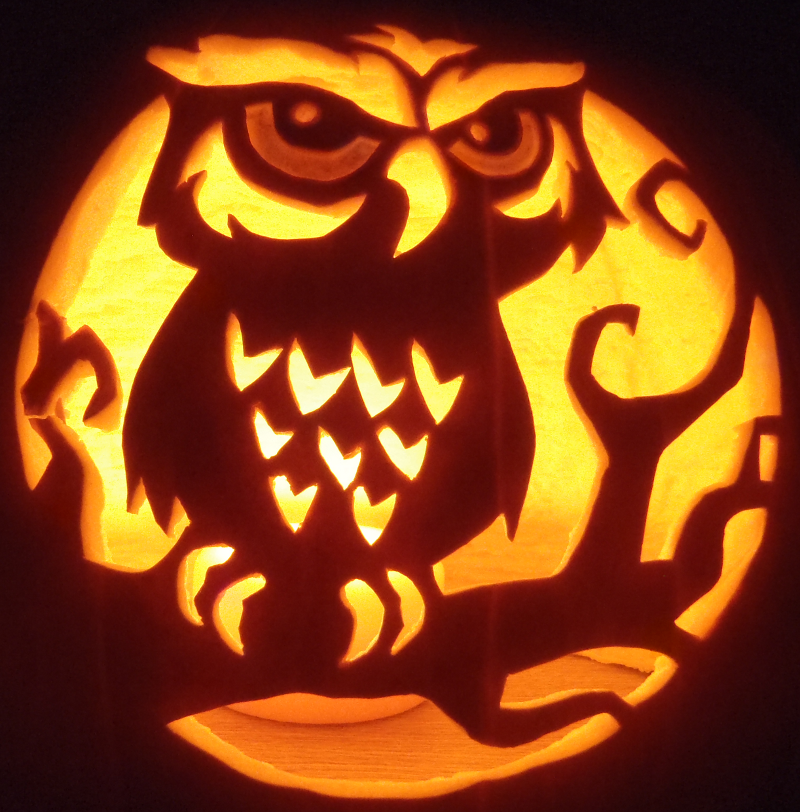 Spooky curious owl by johwee on deviantart spooky curious owl by johwee pronofoot35fo Choice Image