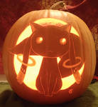 Contract Plz Pumpkin Light