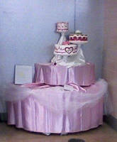 Valentine Cake Display by SonicRose