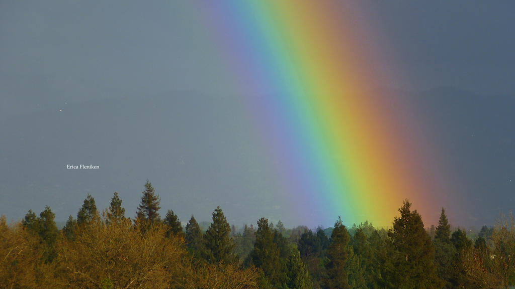 Califnornia Rainbow by DaisyDinkle