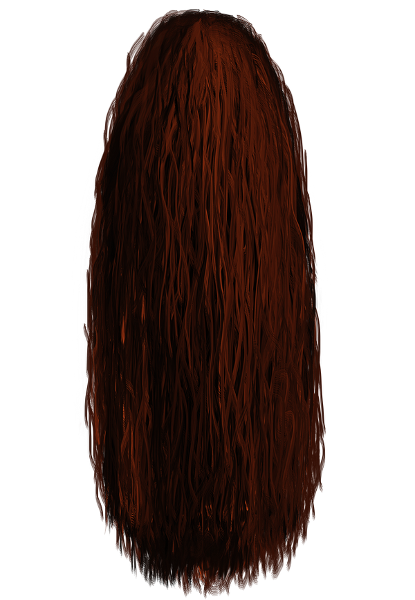 long hair and hair style