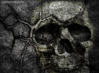 Concrete And Bone by experiment24