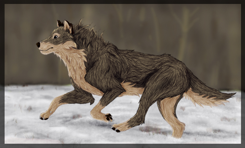 - BALTO wolf - by Lingh666
