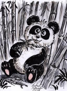 panda1WEb