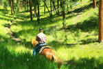 SD Black Hills 14 by HopeGallops