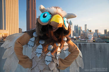 Boomkin in the City
