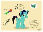Soap Box - OC Pony